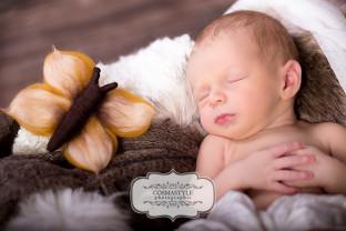 newborn baby dillingen-fotograf