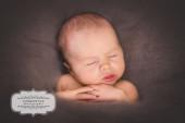 Babyflüsterin Bayern Neugeborenenfoto Ziertheim